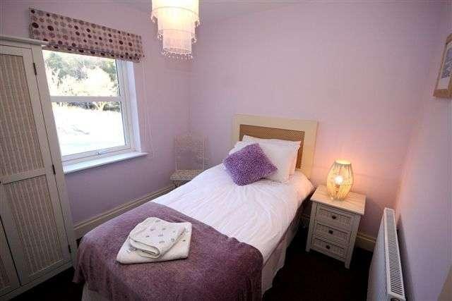 quarto pequeno violeta